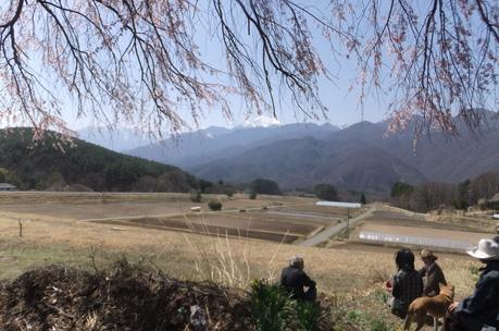 新緑の富士見でわが友、故岡部牧夫の落葉舎を訪ねる_c0242406_7435787.jpg