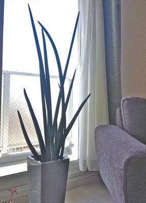 生活に植物の潤いを!_a0169017_1235250.jpg