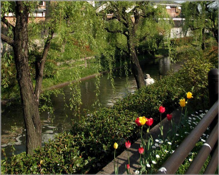 「京都・伏見・中書島~堀と酒蔵のある風景」_d0133024_11591243.jpg