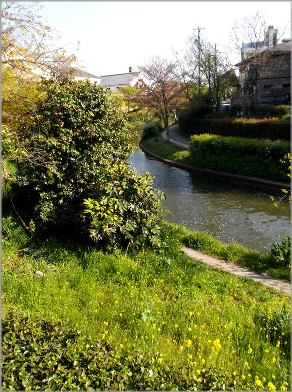 「京都・伏見・中書島~堀と酒蔵のある風景」_d0133024_1231284.jpg
