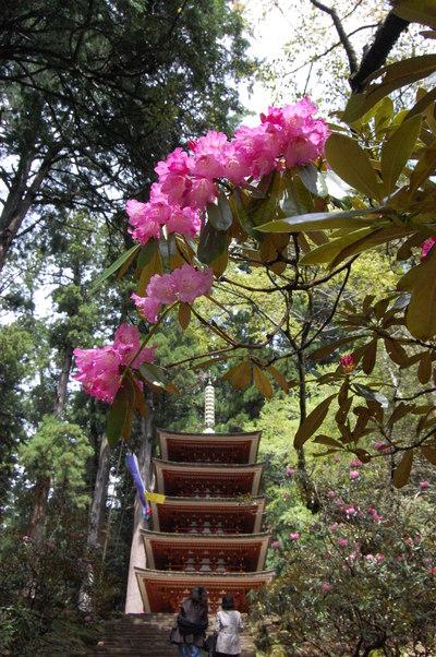 4月21日の室生寺は正御影供_a0237937_17563228.jpg