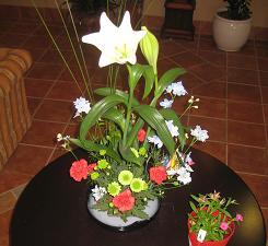 春ですよーッ♪♪_e0163042_9332965.jpg