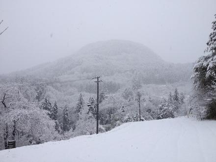 雪でも営業してます_d0249047_758597.jpg