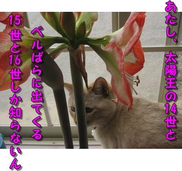 b0151748_15173797.jpg