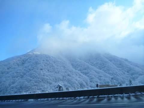 【滑走レポ 2013.4.11】 ラストパウダーを狙って@かぐら_e0037849_7373223.jpg