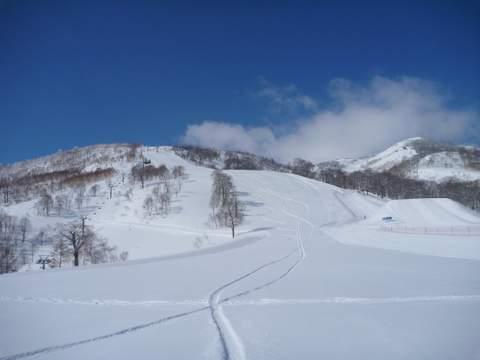 【滑走レポ 2013.4.11】 ラストパウダーを狙って@かぐら_e0037849_7412987.jpg