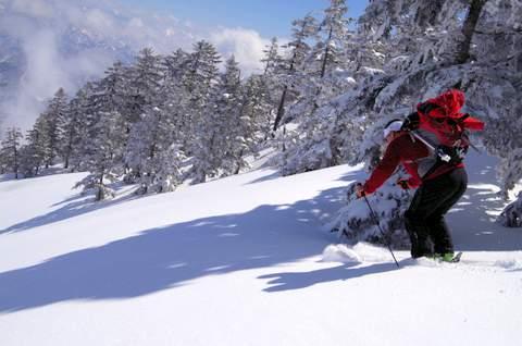 【滑走レポ 2013.4.11】 ラストパウダーを狙って@かぐら_e0037849_7454666.jpg