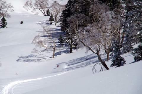 【滑走レポ 2013.4.11】 ラストパウダーを狙って@かぐら_e0037849_746176.jpg