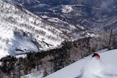 【滑走レポ 2013.4.11】 ラストパウダーを狙って@かぐら_e0037849_7463863.jpg