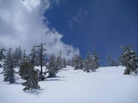 【滑走レポ 2013.4.11】 ラストパウダーを狙って@かぐら_e0037849_7485826.jpg
