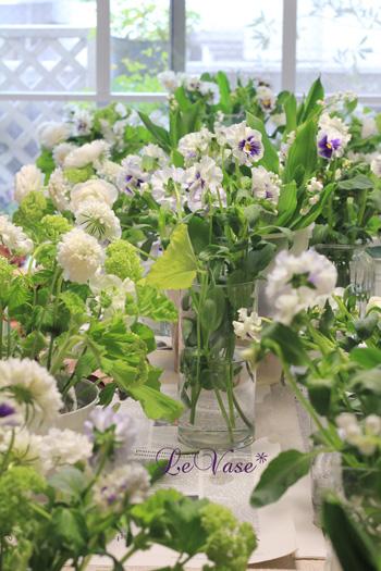 Spring Garden♪_e0158653_1203159.jpg