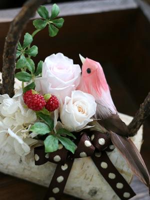 小鳥ちゃんたち。_a0118355_1616232.jpg
