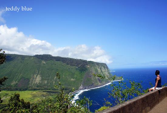 Waipio Valley, Hawaii  ワイピオバレー_e0253364_10482618.jpg
