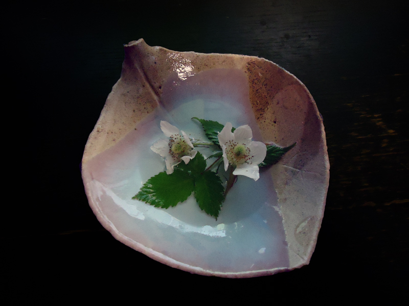 新作陶器_c0142471_2065049.jpg
