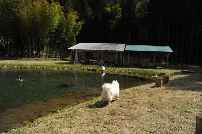ホームキャンプ場♪ part1_a0049296_18472388.jpg
