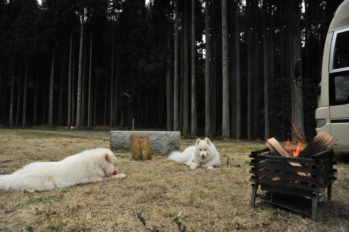 ホームキャンプ場♪ part1_a0049296_18491631.jpg