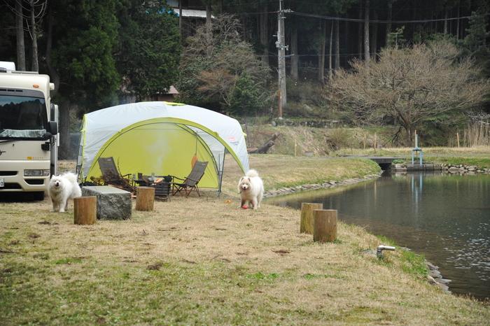ホームキャンプ場♪ part1_a0049296_18561553.jpg