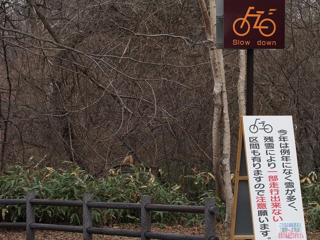 散歩での光景_f0138096_16493616.jpg
