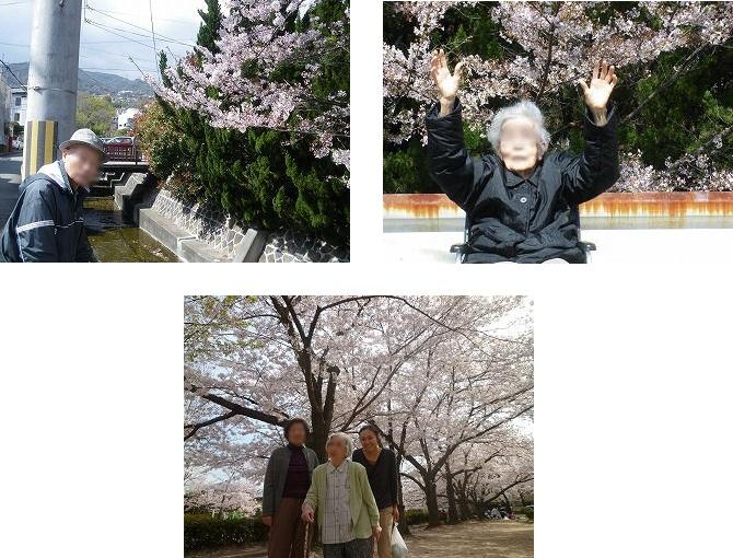 お花見<アクティブライフ夙川・グループホーム>_c0107602_1463145.jpg
