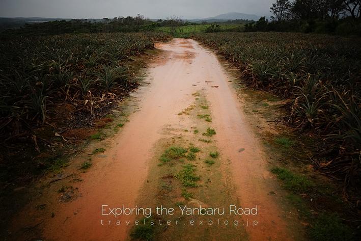 Exploring the Yanbaru Road._b0108109_20561597.jpg