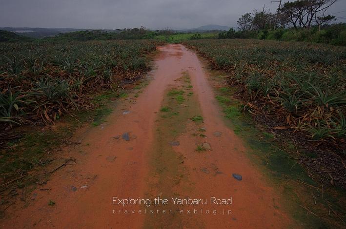 Exploring the Yanbaru Road._b0108109_21261685.jpg