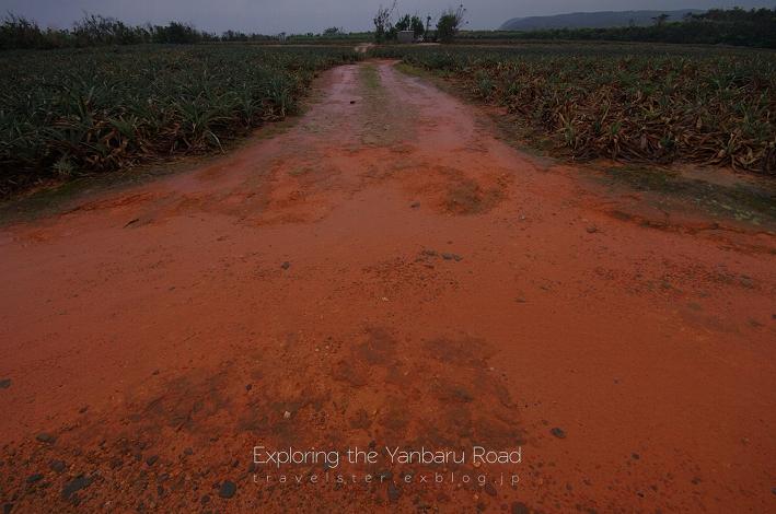 Exploring the Yanbaru Road._b0108109_21264533.jpg