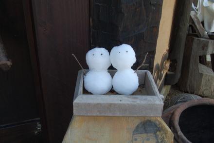 雪解けしました_d0249047_10511467.jpg