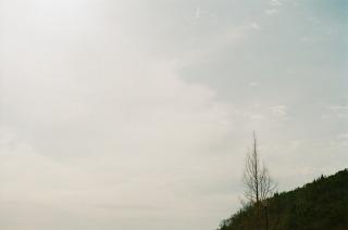 冬のお散歩日和_b0178548_11263673.jpg