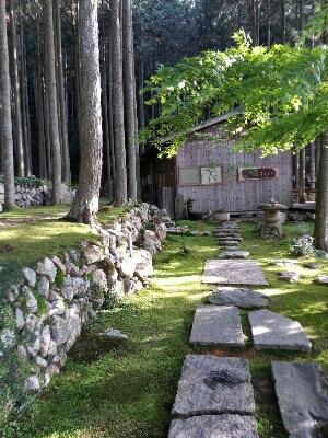 森林浴_c0172049_134374.jpg