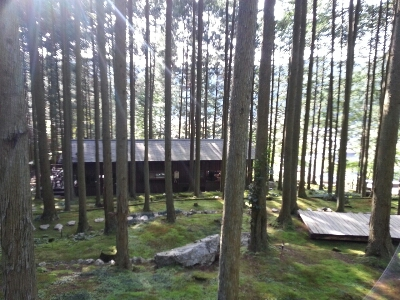 森林浴_c0172049_13441086.jpg