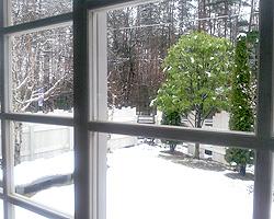 雪だというのに・・・_d0050155_70021.jpg