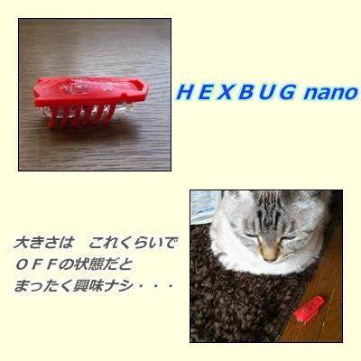 d0259267_9592563.jpg