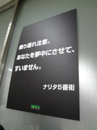 d0082970_015194.jpg
