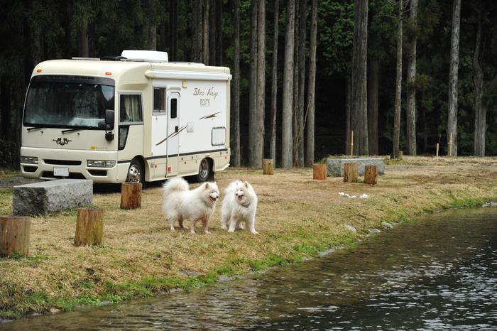 ホームキャンプ場♪ part2_a0049296_20271043.jpg