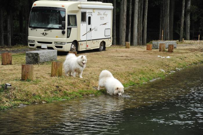 ホームキャンプ場♪ part2_a0049296_2028758.jpg