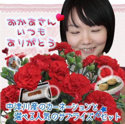 d0063218_1095892.jpg