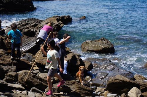 今年は海のハイキング_f0106597_3142697.jpg