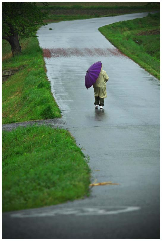 今日も春の嵐_d0272207_1484745.jpg