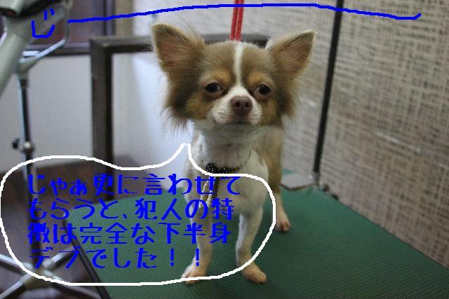 b0130018_0375993.jpg