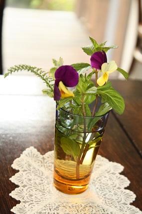 野の花・千葉のカフェ_c0127029_9592920.jpg