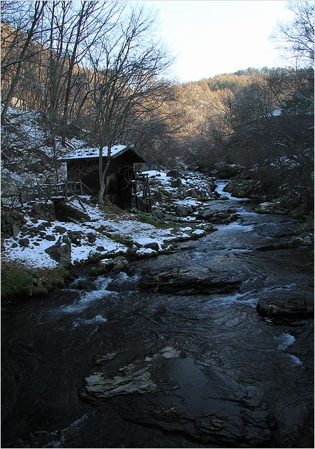 信州へバス旅行・・・・蓼科  滝の湯周辺_a0256349_14414894.jpg