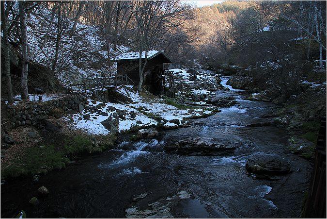 信州へバス旅行・・・・蓼科  滝の湯周辺_a0256349_14415887.jpg