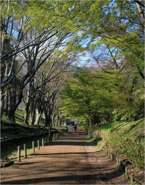 信州へバス旅行・・・・上田城跡公園_a0256349_20221663.jpg