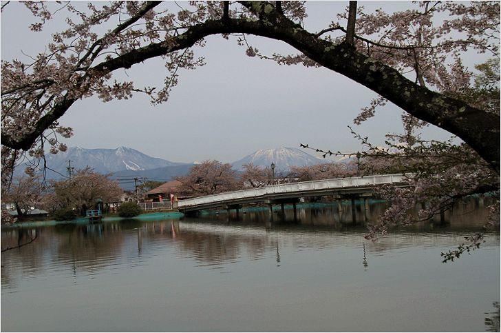 信州へバス旅行・・・・臥竜公園_a0256349_2143470.jpg