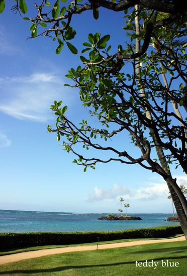 The Kahala Hotel & Resort, Hawaii  カハラ ホテル&リゾート_e0253364_1173393.jpg