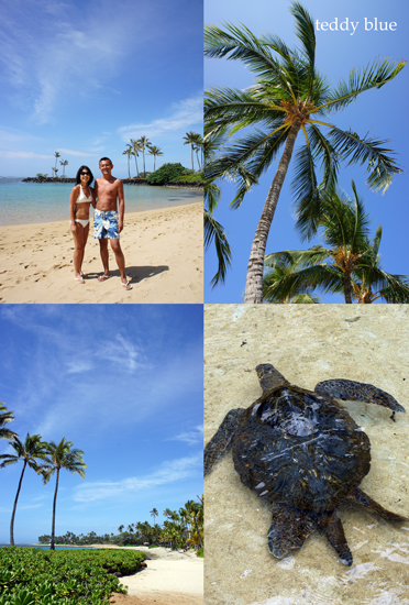 The Kahala Hotel & Resort, Hawaii  カハラ ホテル&リゾート_e0253364_1182515.jpg