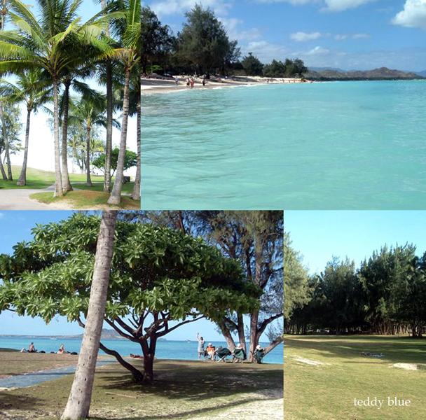 Kailua Beach, Hawaii  カイルアビーチ_e0253364_159357.jpg