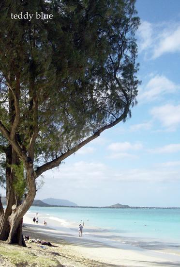 Kailua Beach, Hawaii  カイルアビーチ_e0253364_1594698.jpg