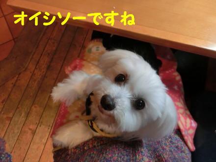 b0193480_10454583.jpg