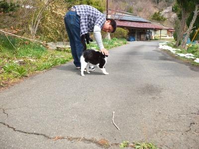 犬と猫とヒト 1_a0180681_1641222.jpg